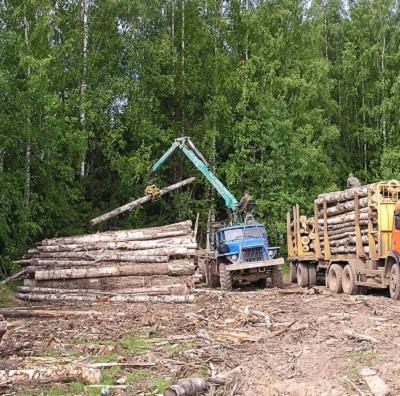 Предприятие в Усть-Илимском районе нанесло ущерб лесам и почве на 40 миллионов рублей