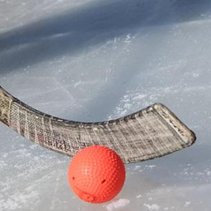 Определились все участники плей-офф чемпионата России по хоккею с мячом