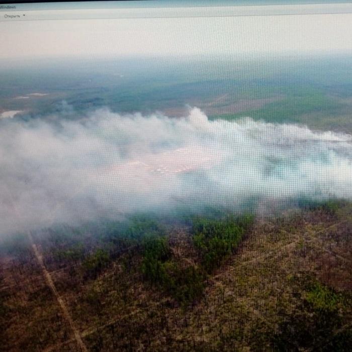 Более 7,5 тысячи га леса горит в Иркутской области