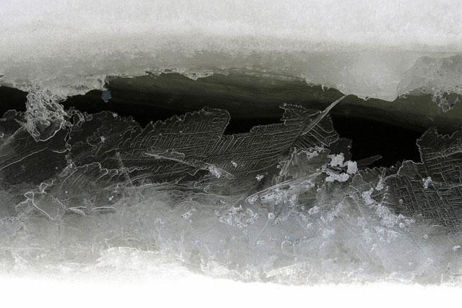 Четверо пропавших рабочих натракторе вБратском районе провалились под лёд