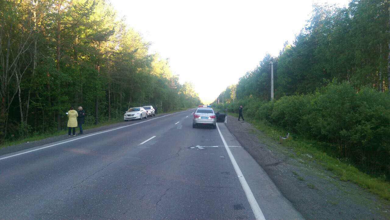 Неизвестный шофёр сбил пешехода около Утулика ибросил умирать