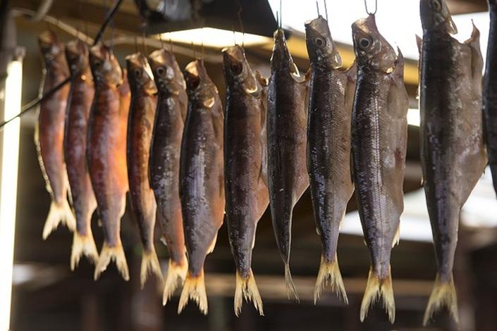 ВБратское водохранилище выпустят 200 000 мальков байкальского омуля